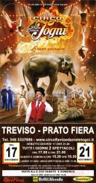 Circo Flavio e Daniele Togni Circus poster - Italy, 2016