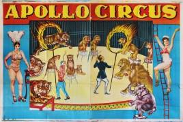 Apollo Circus Circus poster - India, 0