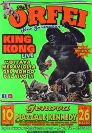 Circo Nelly Orfei Circus poster - Italy, 2017