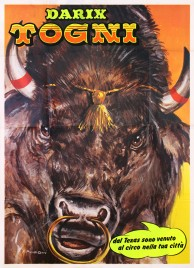 Circo Darix Togni Circus poster - Italy, 1986