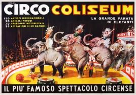 Circo Coliseum Circus poster - Italy, 0