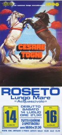 Circo Cesare Togni Circus poster - Italy, 1990