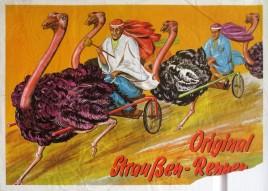 Original Straußen-Rennen Circus poster - Germany, 1967