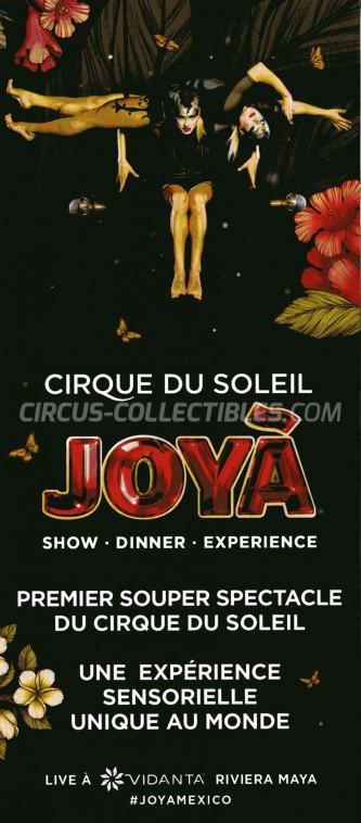 Cirque du Soleil Circus Ticket/Flyer - Mexico 2016