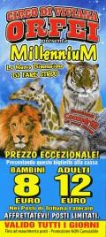 Circo Viviana Orfei Circus Ticket - 2014