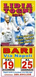 Circo Lidia Togni Circus Ticket - 2014