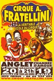 Cirque A. Fratellini Circus Ticket - 2012