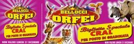 Circo Bellucci + Mario Orfei Circus Ticket - 0