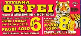 Circo Viviana Orfei Circus Ticket - 2012