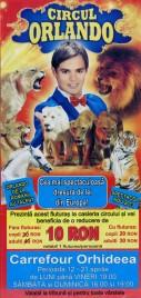 Circul Orlando Circus Ticket - 2013