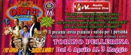 Circo Nelly Orfei Circus Ticket - 2015