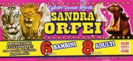 Circo Sandra Orfei Circus Ticket - 2018