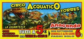 Circo Acquatico Torres Circus Ticket - 2019
