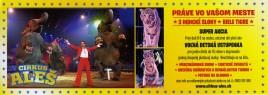 Cirkus Aleš Circus Ticket - 2016