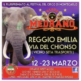 Circo Medrano Circus Ticket - 2015