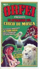 Circo Nelly Orfei Circus Ticket - 2013